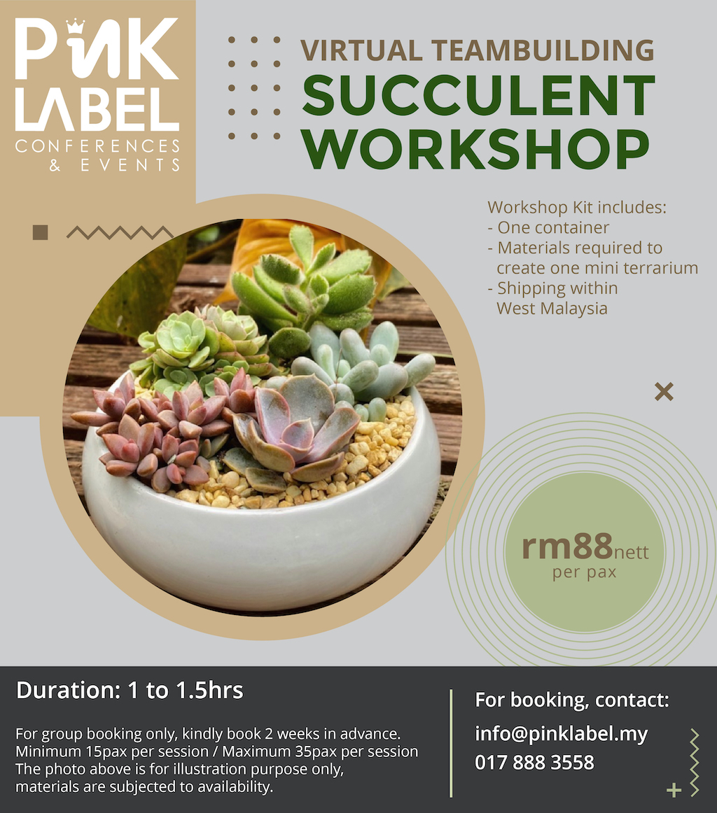 Succulent Workshop Poster